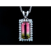 Bi Color Tourmaline Pendant